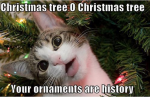 christmas-tree-o-christmas-tree-your-ornaments-are-history-funny-merry-memes.png