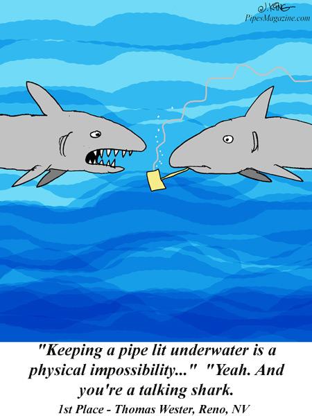 talking shark cartoon
