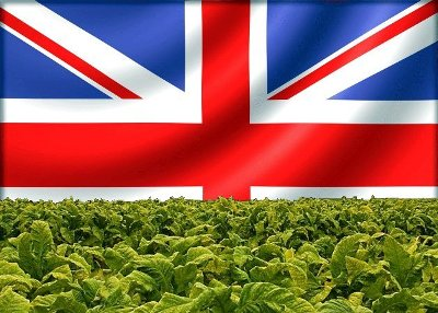 English Pipe Tobacco Blends